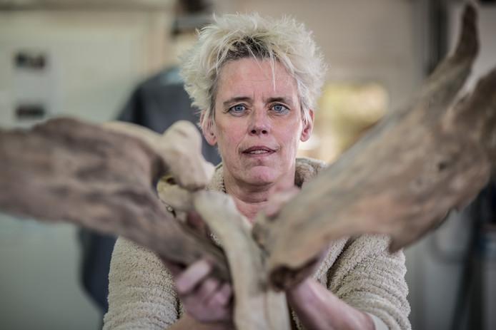 Kunstenares Marjo Wiltingh herstelt van een ernstig motorongeluk en begint weer langzaam met het creëren van kunstwerken. Zoals een vogelfiguur van sprokkelhout.