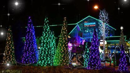 Amerikaanse wijk vervroegt kerstfeest zodat terminaal zieke Brody (2) nog mee kan vieren