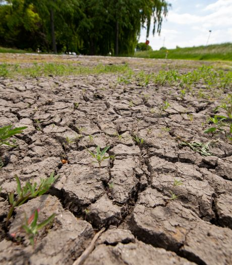 Provincie Antwerpen neemt bijkomende droogtemaatregelen op onbevaarbare waterlopen
