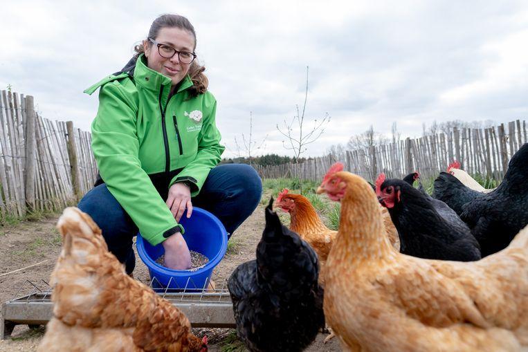 Zorgboerderij Tallaart gaat een halftijdse kracht met een therapeutische achtergrond in dienst nemen. Om dat te helpen financieren organiseert Evi Van Camp binnenkort boerderijkampen.