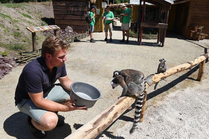 Wandelen tussen de dieren, het kan in Overloon.