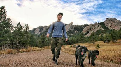 Jordan (30) redt twee achtergelaten puppy's, zegt job op en reist met schattige hondjes door de VS