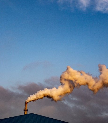 Brabant gaat boeren en bedrijven uitkopen in strijd tegen stikstof