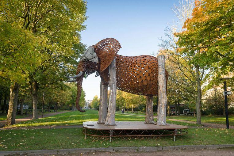 Drie maanden lang kan je de schattige olifant aan het Zuidpark bewonderen.