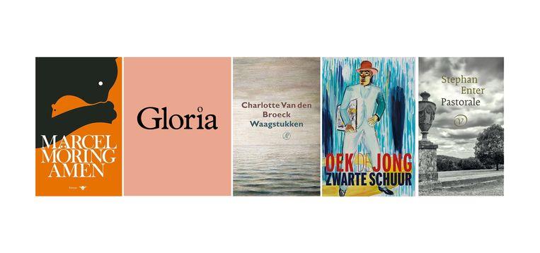 Genomineerde boeken. Beeld