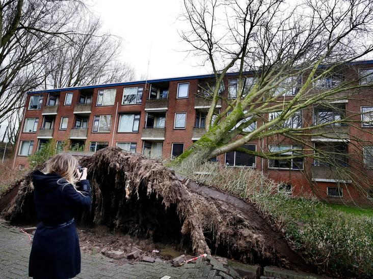 De storm raasde en speelde met bomen en daken