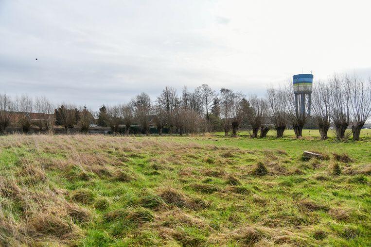 Buurtbewoners zijn nu vertrouwd met groene weides en velden. Dat willen ze ze graag zo houden.