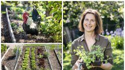 Moestuin voor gevorderden: de beste tips van tuinexperte Laurence Machiels
