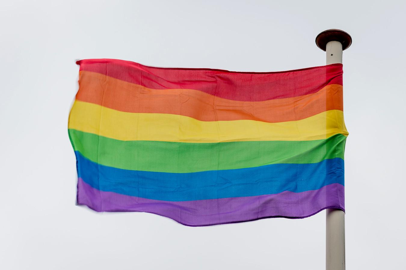 De regenboogvlag.