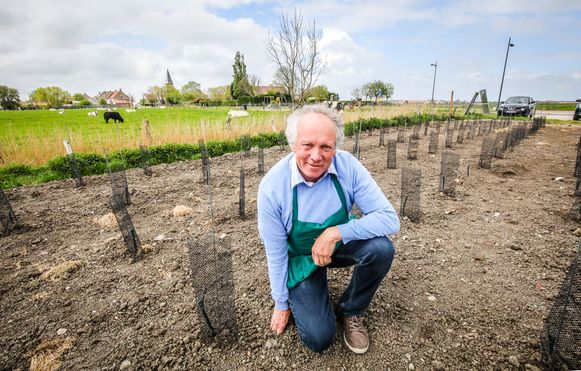 Een fiere Eddy Durnez op zijn wijngaard