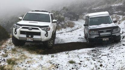 Het sneeuwt zelfs op Hawaï