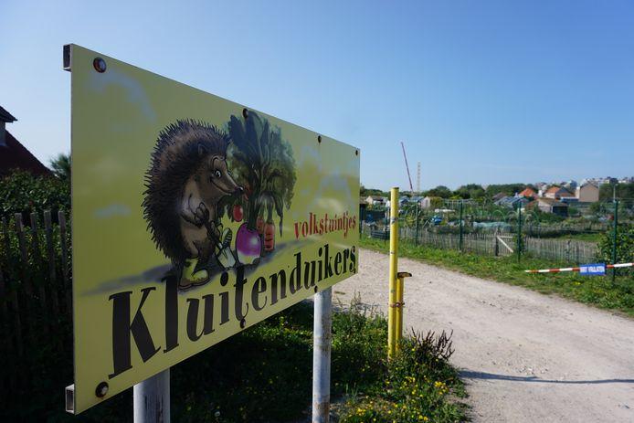 De tuinliefhebbers van volkstuintjes Kluitenduikers in Middelkerke maken zich grote zorgen.