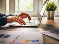 Regio Zwolle krijgt 700.000 euro voor digitale handel