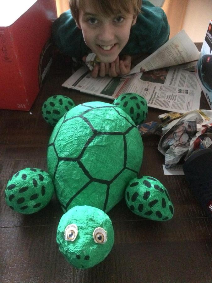Sintsurprise: een schildpad