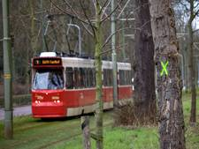 Vervangen spoor kost 120 bomen aan Scheveningseweg