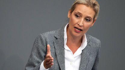 AfD-fractlieleidster wijst alle betichtingen ivm schenkingen aan de partij af