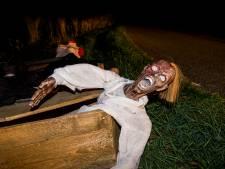Zombies teisteren nachtelijk Tricht