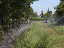 Op meerdere plekken brand in parkje in Beneden-Leeuwen