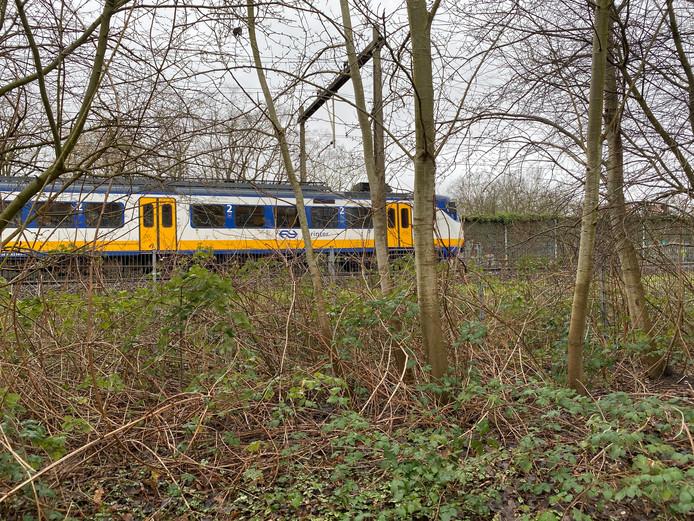 De trein in Deventer mag voorlopig niet verder.