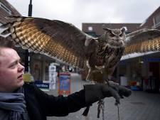 VVD twijfelt aan plan voor roofvogelpark in Bunschoten