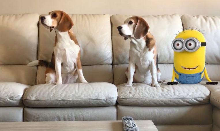 Louie (5) en Marie (3) veroveren Youtube met hun filmpjes.
