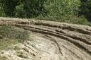 wildcrossers veroorzaken schade aan de natuur