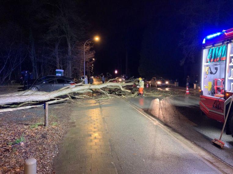 De boom kwam over de hele weg terecht.