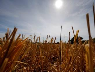 KMI maakt nieuwe klimaatnormalen bekend: het blijft maar warmer, droger en zonniger worden