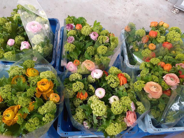 Via de webshop zijn allerlei bloemen van plaatselijke kwekers te krijgen.