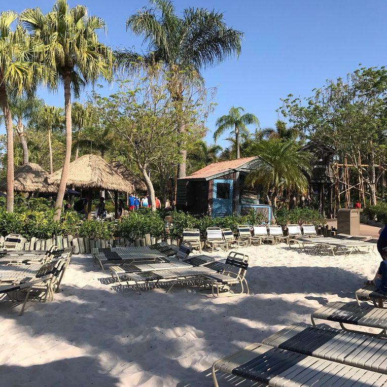 Disney's Typhoon Lagoon Water Park – Orlando (Verenigde Staten)