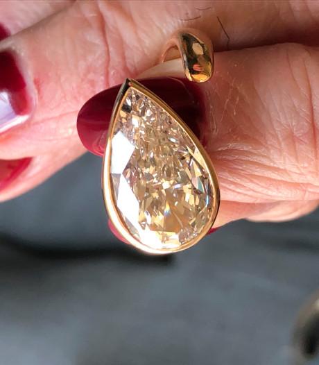 De perfecte juwelenroof van de butler van Huis ter Duin