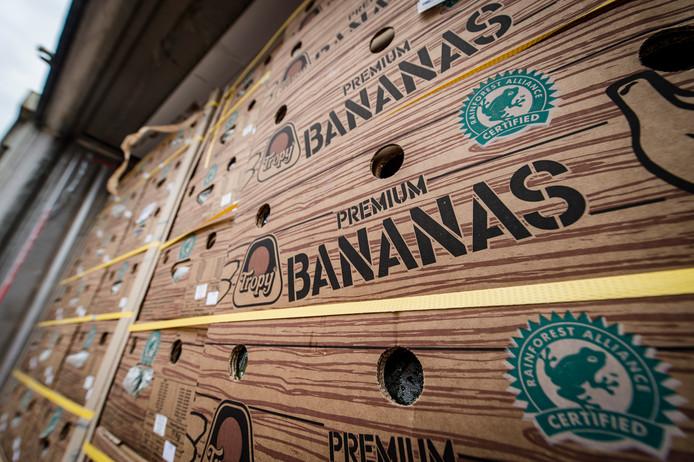 Dozen met bananen in containers in de haven van Antwerpen. Foto ter illustratie.