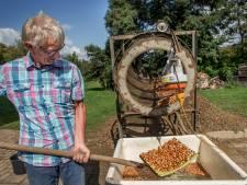 Notenteelt kan Overijsselse agrariërs helpen aan extra inkomsten