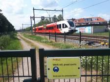 Schip vaart tegen spoorbrug: treinen tussen Gorinchem en Geldermalsen rijden weer