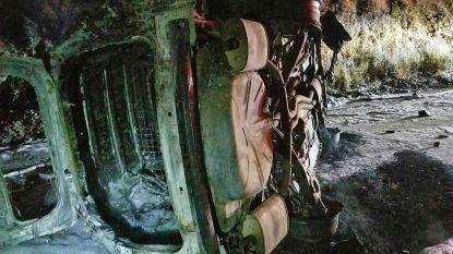Beer valt op patrouillewagen: voertuig kantelt en schiet in brand