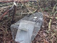 Politie betrapt illegale jager op heterdaad in Roosendaal