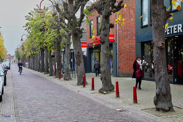 De Marktstraat in Made, waar de vraag is of de bomenrij moet wijken voor het nieuwe centrumplan. Foto Pix4Profs / Johan Wouters