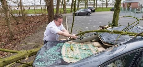 Boom op auto bij Engelse werk Zwolle