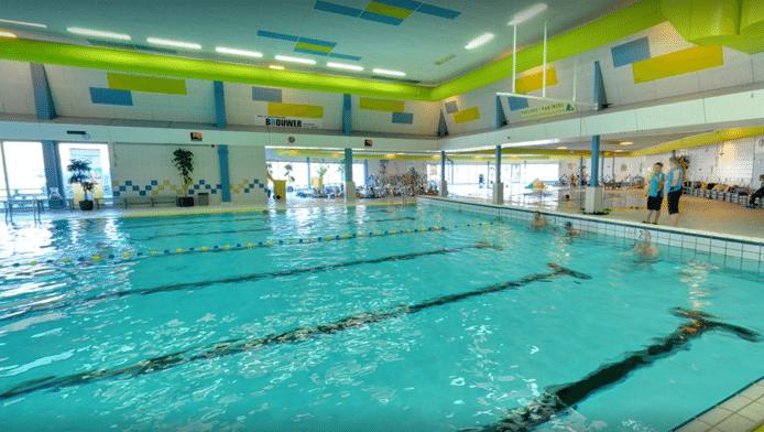 Mascotte strijdt voor zwembad den haag for Zwembad den bosch