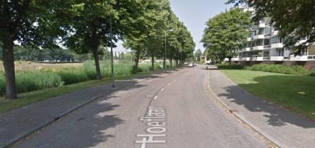 Verdachte (59) van mishandeling aangehouden in Den Bosch