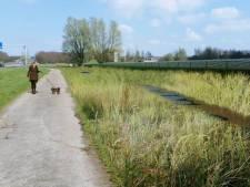 'Niet meer dan 75 hectare grond reserveren voor zonneparken in Roosendaal'