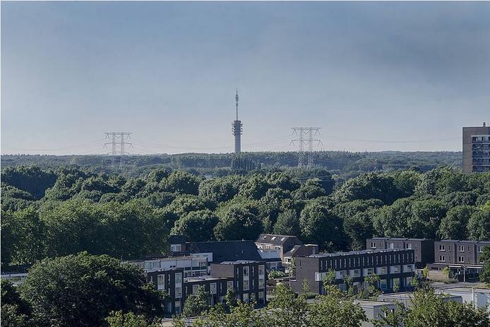 De gemeente Tilburg stelt gratis bomen beschikbaar.