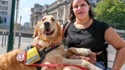 IJssalon Häagen-Dasz slaat mea culpa voor weigering assistentiehond