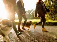 Oproepje aan gemeente Almelo: zoek plek voor hondenuitlaatterrein in binnenstad!