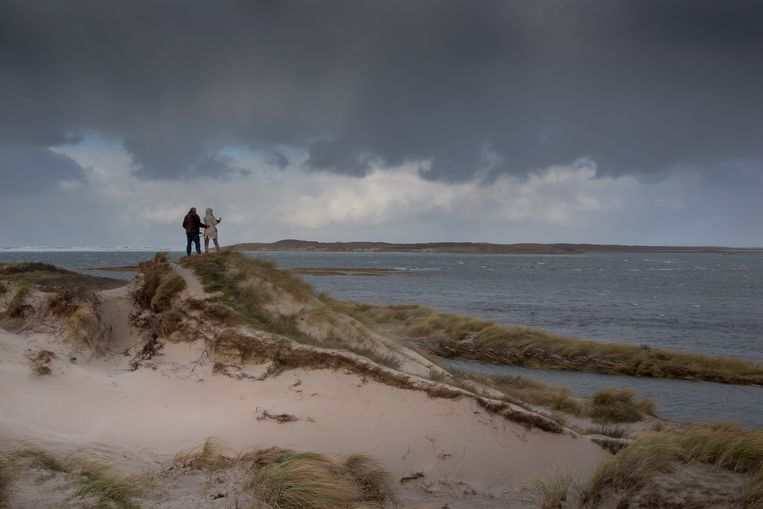 De Slufter op Texel, een krekenstelsel waar het fraai wandelen is. Beeld Pieter de Vries