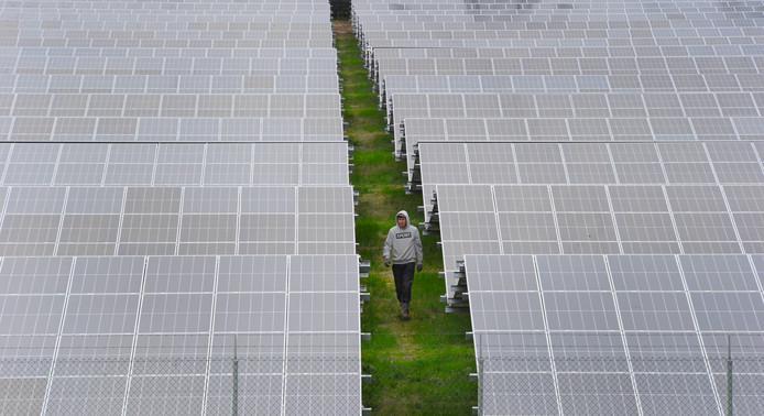 Mike Hubner van Hil Hekwermontage wandelt tussen de zonnepanelen van zonnepark Scaldia.