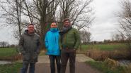 Groen maakt zich zorgen over de 32 populieren die in Woumen zullen sneuvelen