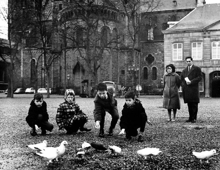 Het is 1962. Op een kerkplein in Maastricht voeren repatrianten uit Indonesië de duiven. (FOTO W.L. STUIFBERGEN, SPAARNESTAD) Beeld