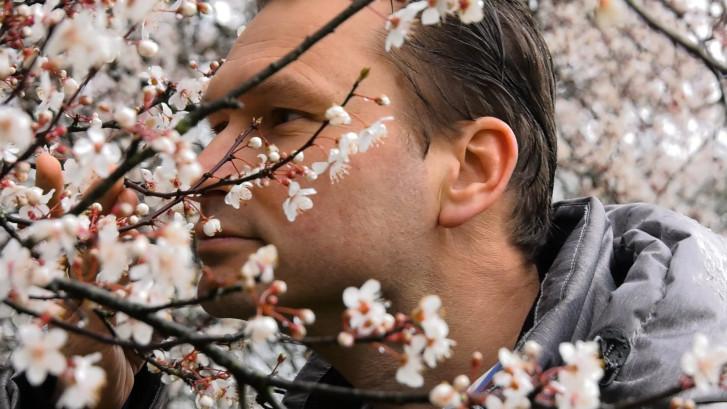 Je verwacht het niet: de lente begint in 2020 vroeger dan ooit