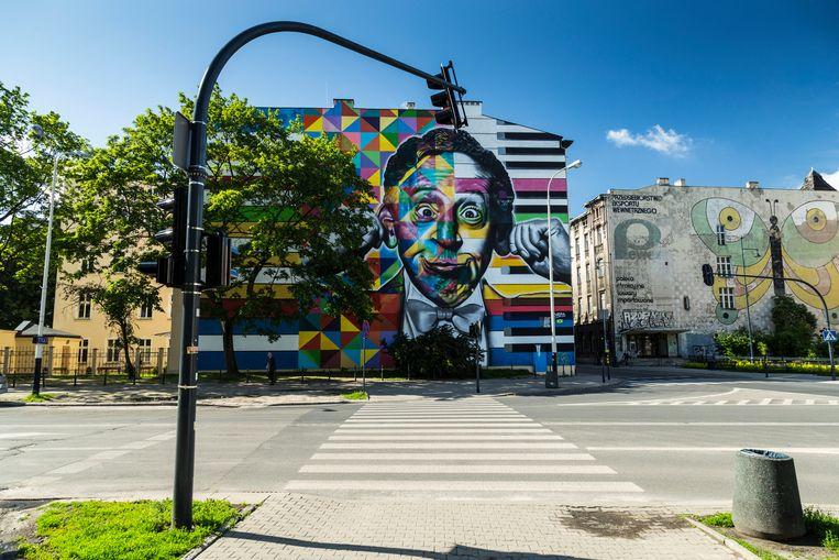 Door de hele stad zijn muurschilderingen.  Beeld Hollandse Hoogte / Mauritius Images GmbH